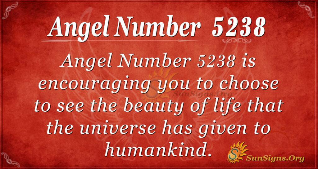 5238 angel number