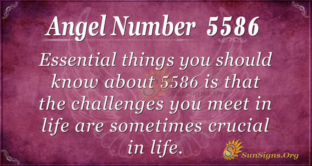 5586 angel number