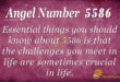 5586 angel number