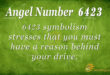 6423 angel number