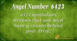 6423 angel number