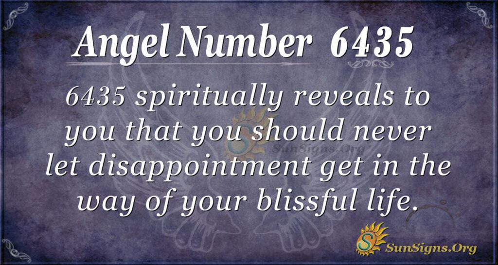 6435 angel number