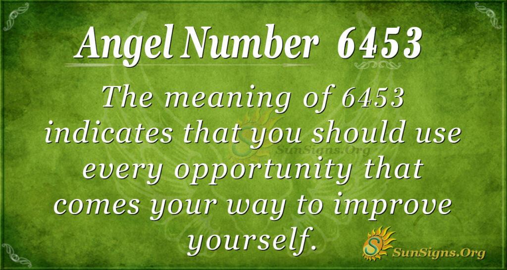 6453 angel number