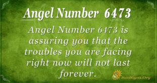 6473 angel number