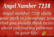 7238 angel number