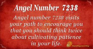 7238 angel number