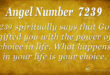 7239 angel number