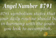 8791 angel number