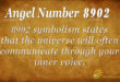 8902 angel number