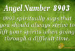 8903 angel number