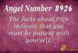 8926 angel number