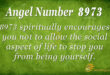 8973 angel number