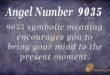 9035 angel number
