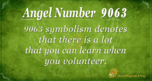 9063 angel number