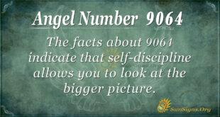 9064 angel number