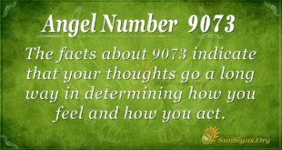 9073 angel number