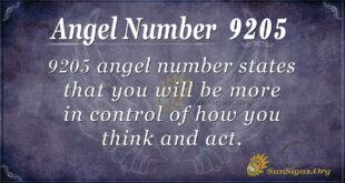 9205 angel number