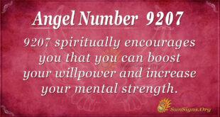 9207 angel number
