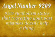 9209 angel number