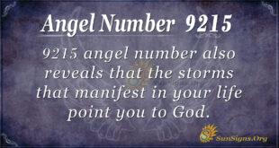 9215 angel number
