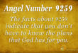 9259 angel number