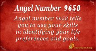 9658 angel number