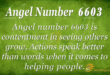 6603 angel number
