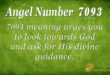 7093 angel number
