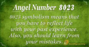 Angel Number 8023