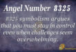 8325 angel number