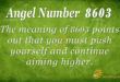 8603 angel number