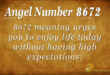 8672 angel number