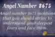 8675 angel number