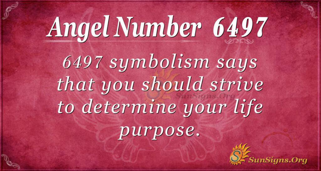 6497 angel number