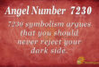 7230 angel number