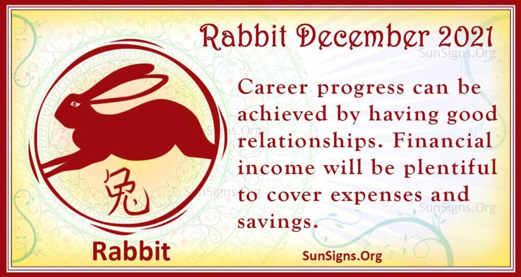 rabbit december 2021