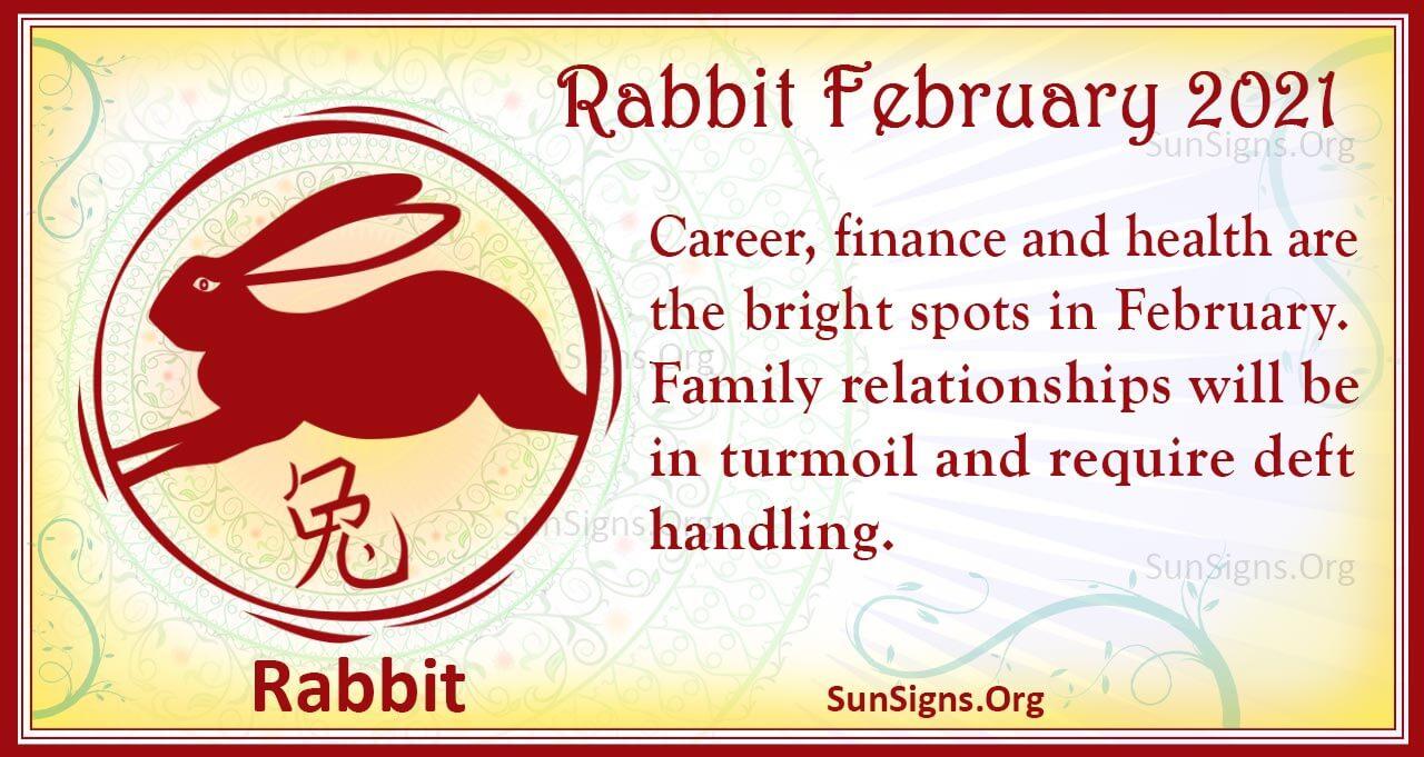 rabbit february 2021