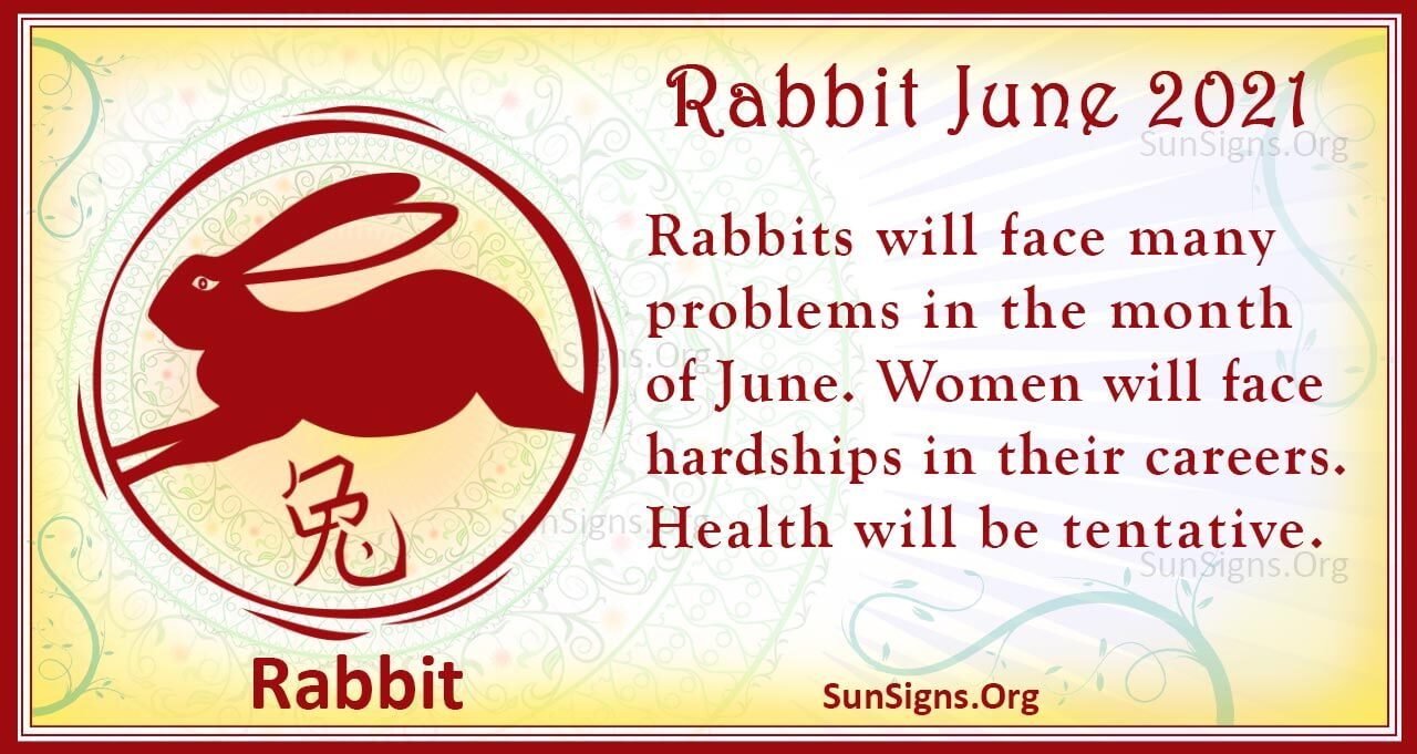 rabbit june 2021