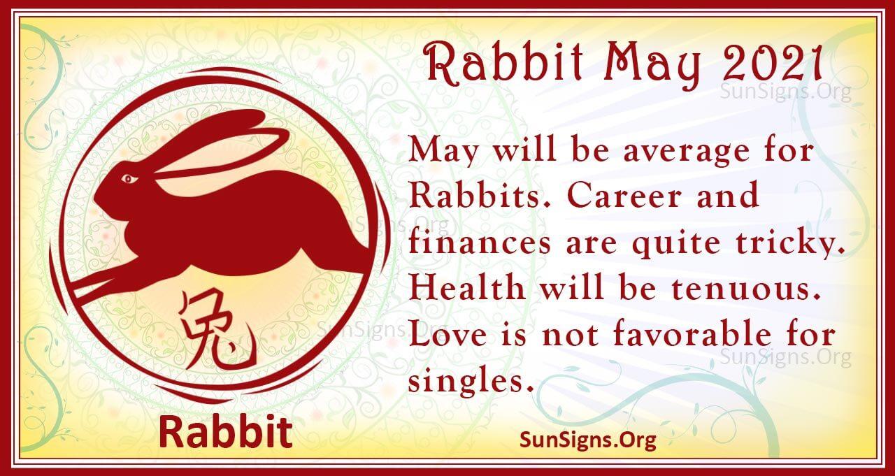 rabbit may 2021