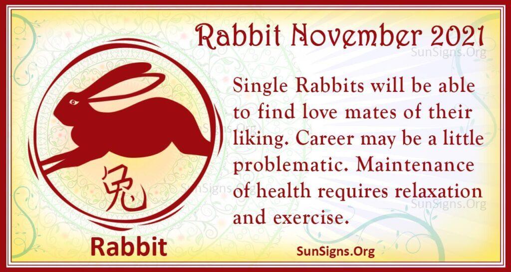 rabbit november 2021