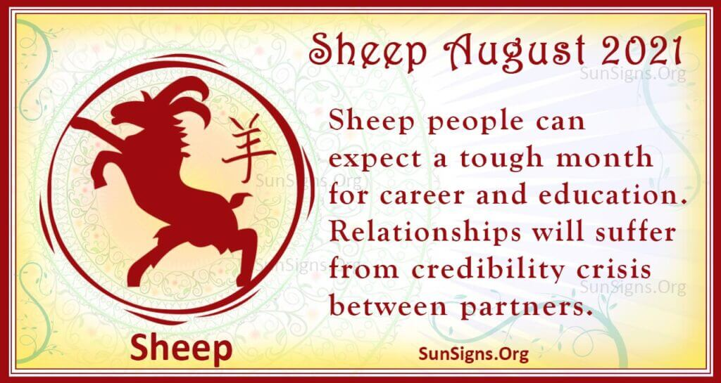 sheep august 2021
