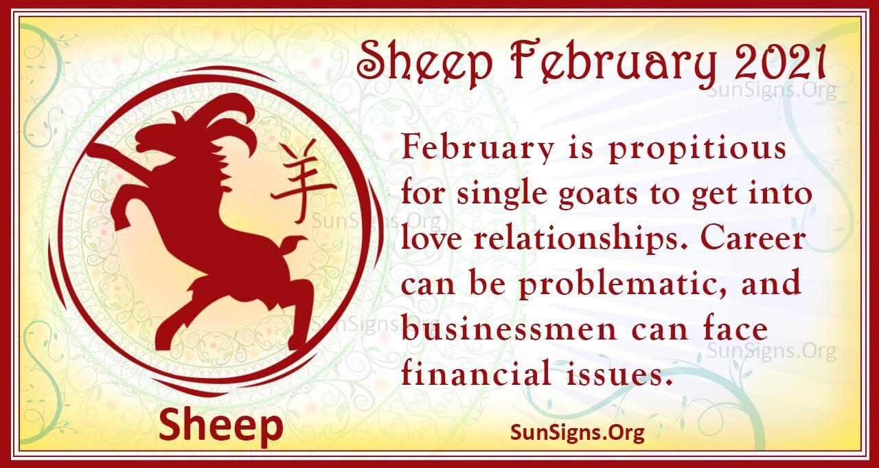 sheep february 2021