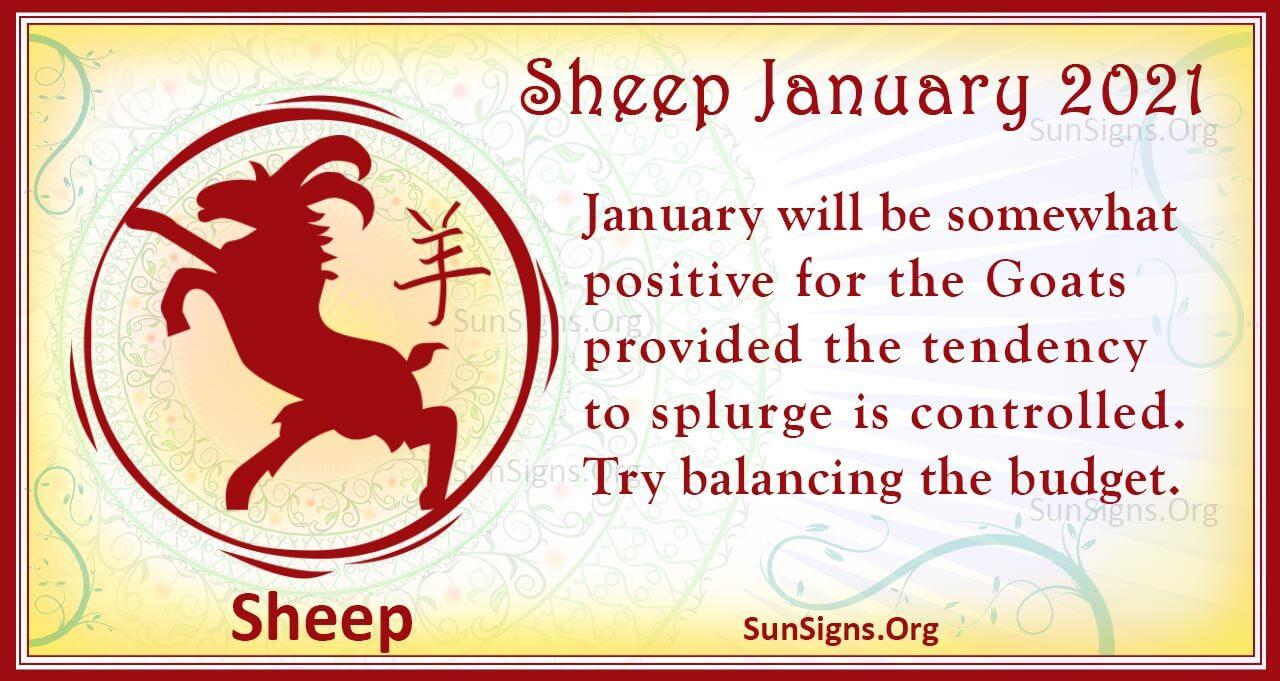 sheep january 2021