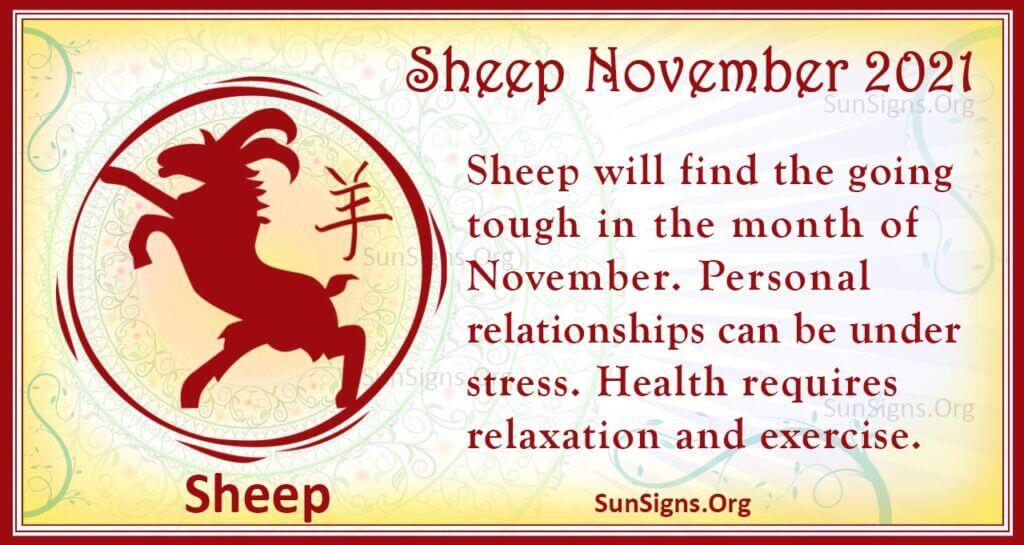 sheep november 2021