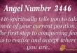 3446 angel number