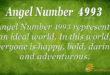 4993 angel number