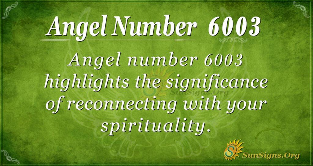 6003 angel number