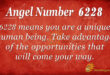 6228 angel number