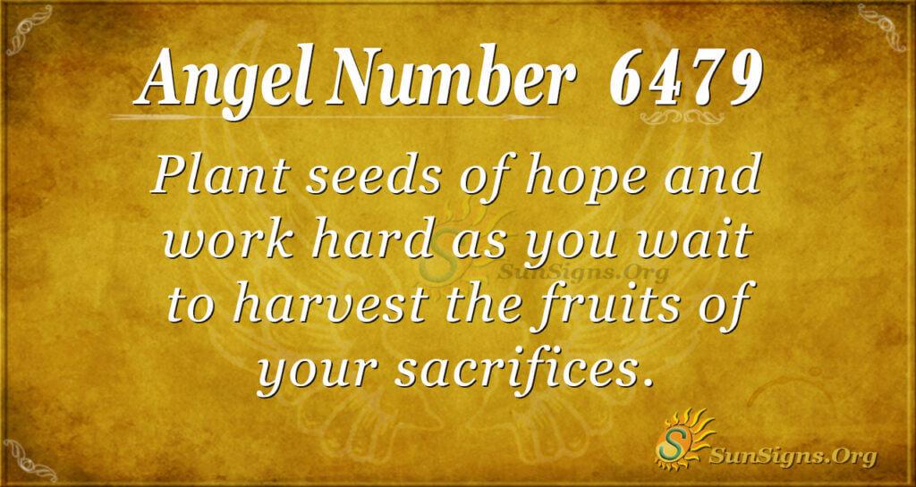6479 angel number