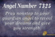 7325 angel number